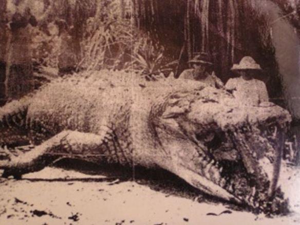 """""""Szwagier gary muw aut!"""" Film Bujang Senang ma traktować o legendarnym słonowodnym krokodylu-ludożercy z Sarawaku. Nie mogę się doczekać! Za: www.cinema.com.my"""