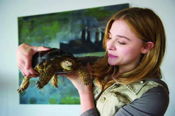 chloe-grace-moretz-and-a-turtle-from-laggies.jpg